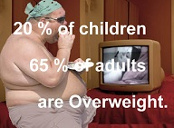 20% of children and 65% of adults are overweight