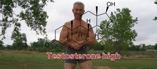 Have a high Testosterone!