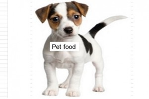 Food for your pet: Hidden toxins to watch